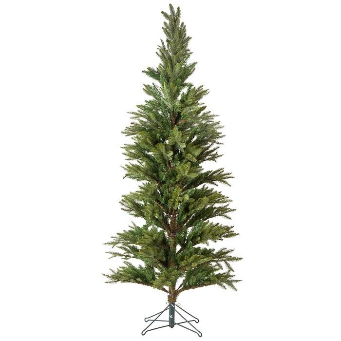 Green pine h245 cm