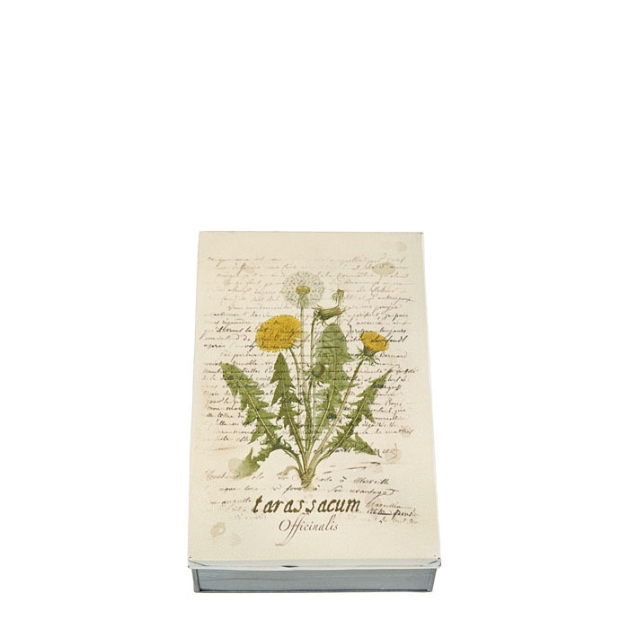 Tin box picture tarassacum flower