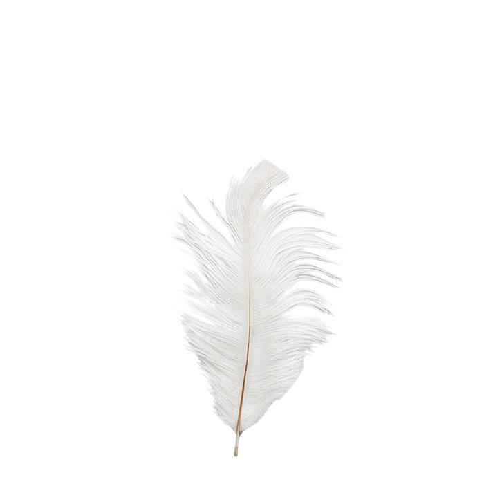 Piuma di struzzo bianca 18 cm