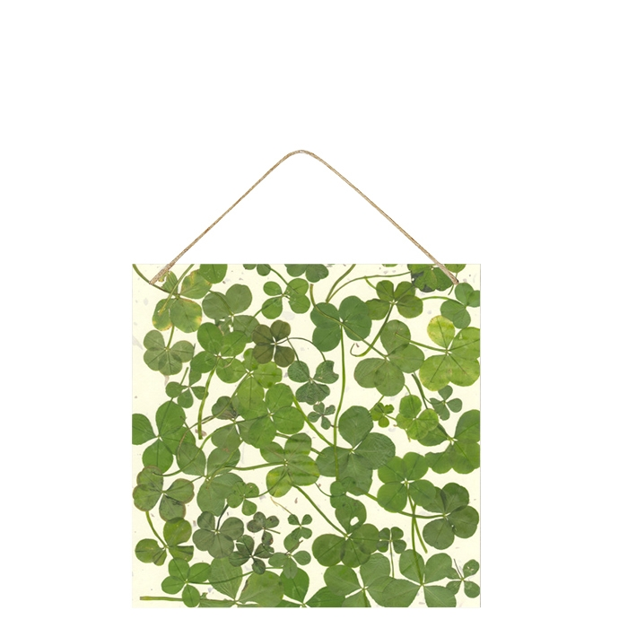 Tin-plated board with clovers 20 x 20 cm