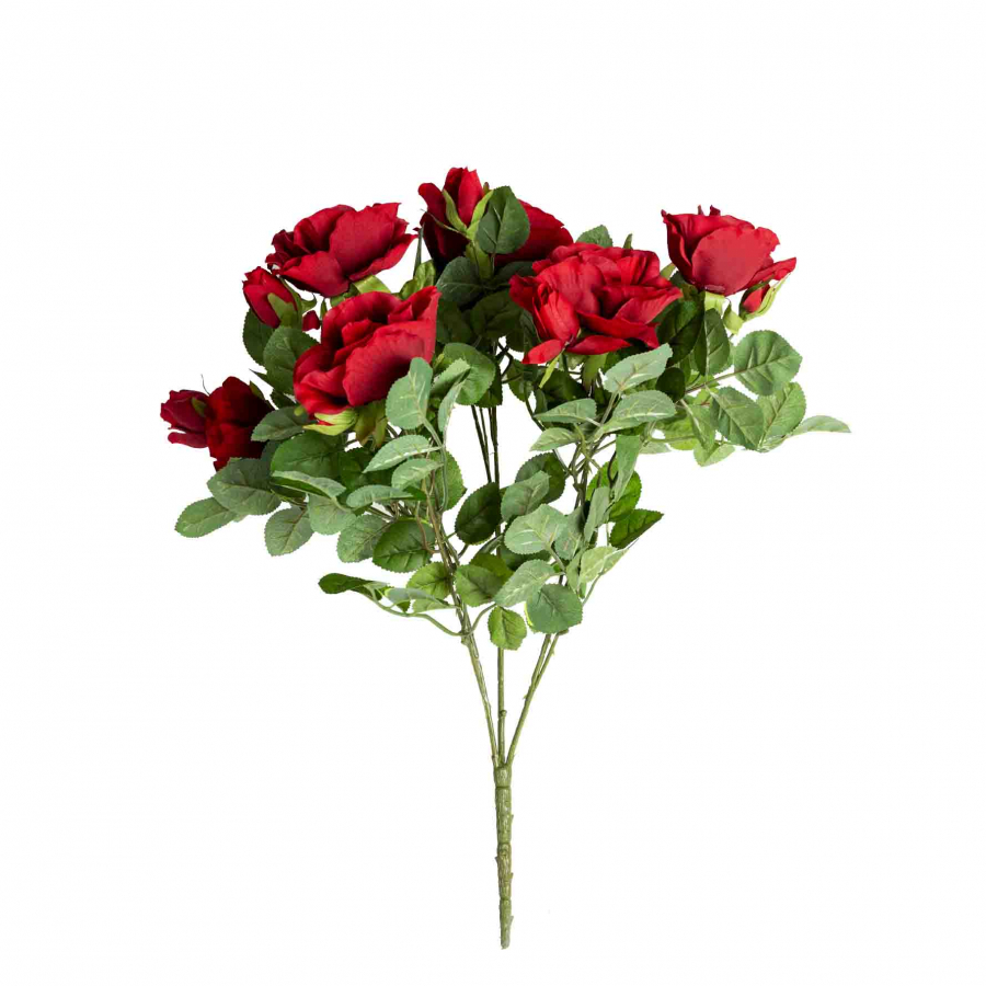 Bouquet de roses couleur rouge