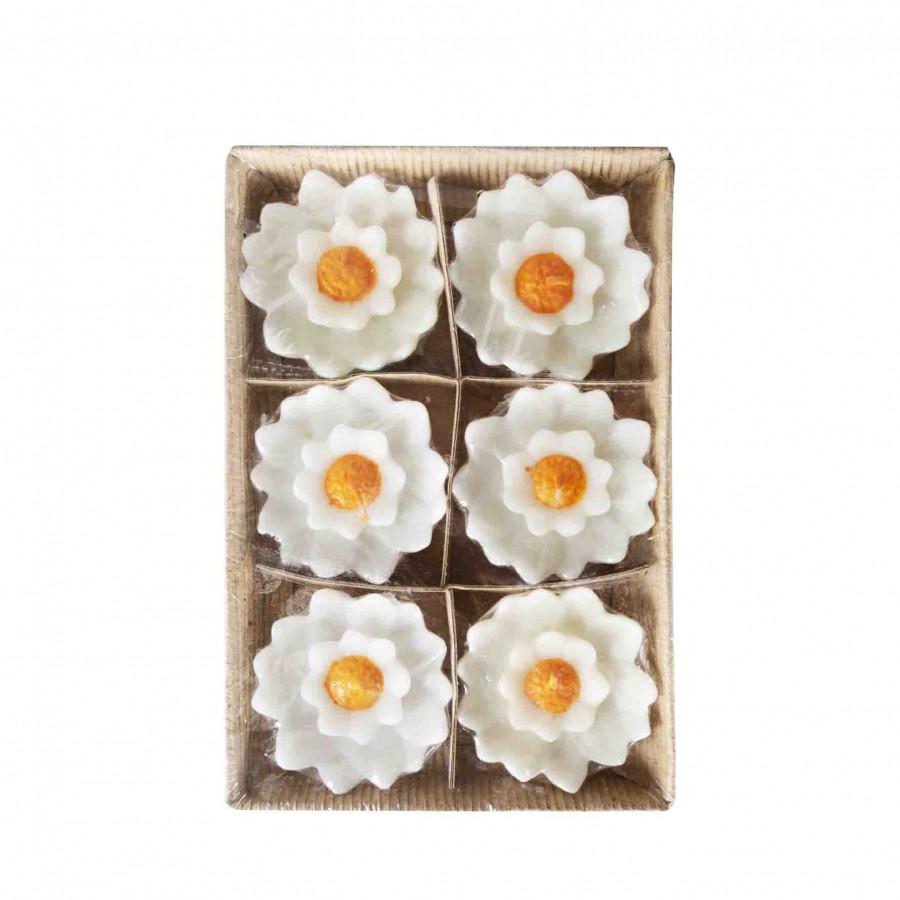 Confezione 6 candele fiore bianco centro arancio d8 cm