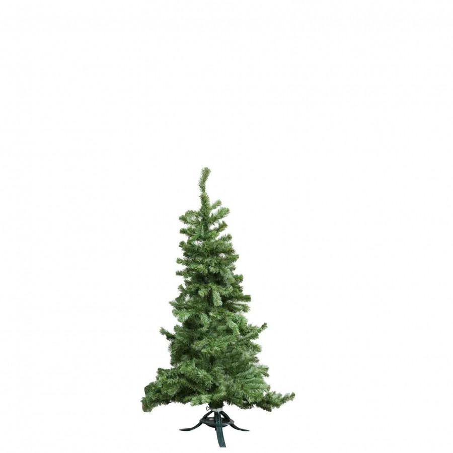 Pino verde h150 cm
